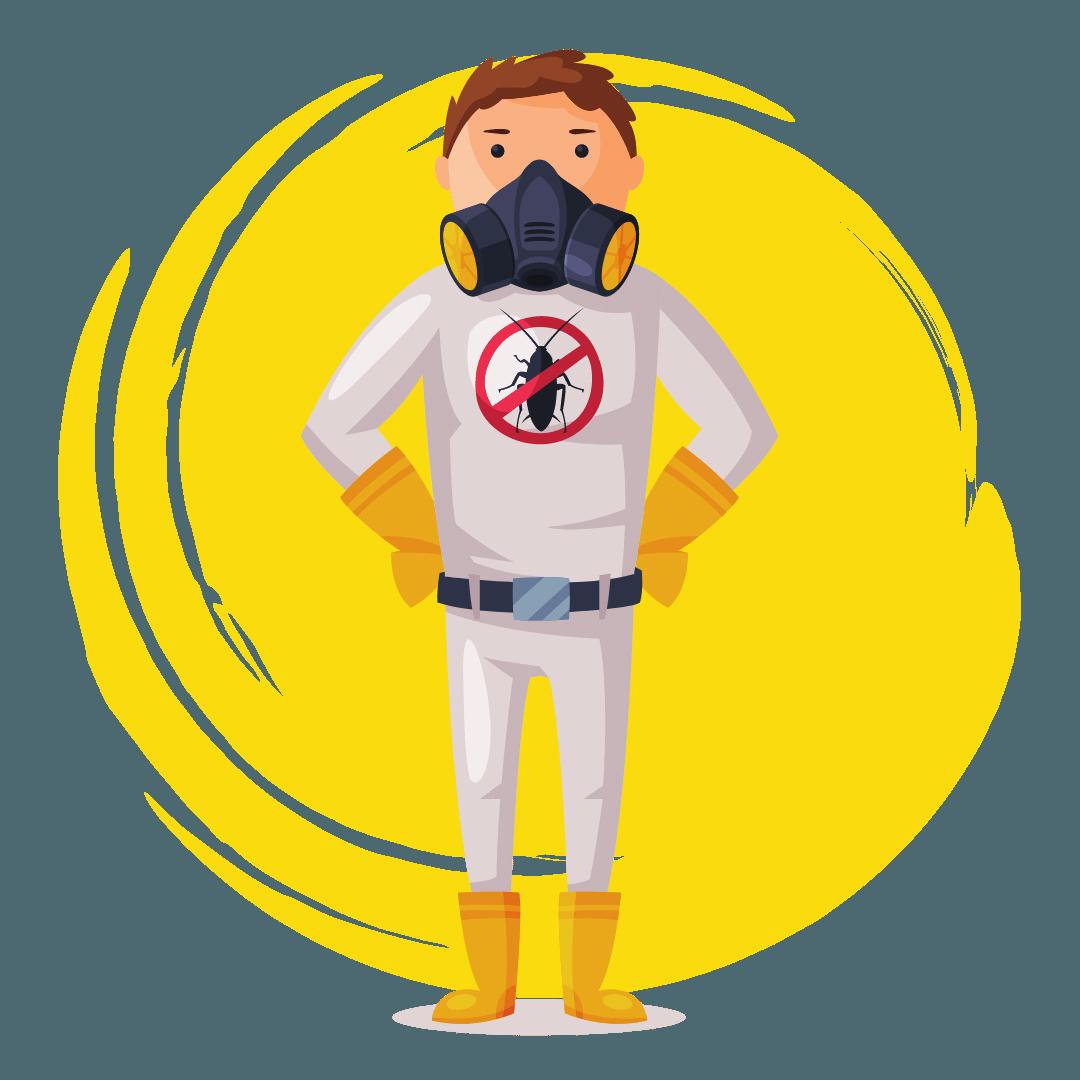 Domestic Pest Control The Gap