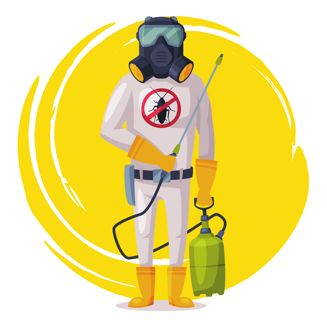End of Lease Pest Treatment The Gap